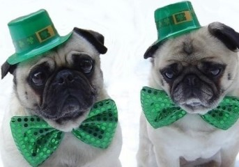 10 drinking songs for St. Patrick's Day