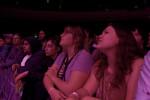 fans, crowd, concert