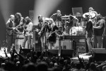 Hard Working Americans, Tedeschi Trucks Band