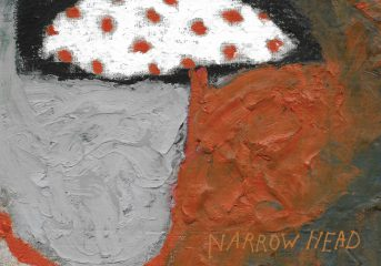 ALBUM REVIEW: Narrow Head resurrects '90s riff music with '12th House Rock'