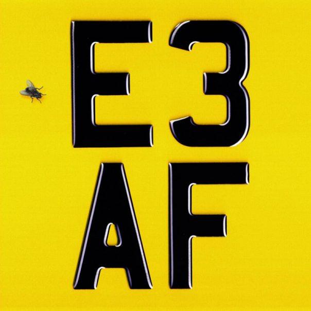 Dizzee Rascal, E3 AF