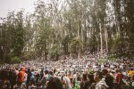 crowd, Stern Grove Festival,